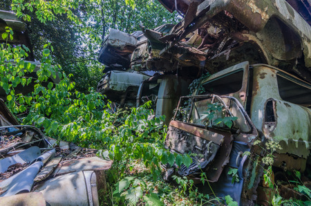 Overgrown cars on an old junkyard 스톡 콘텐츠