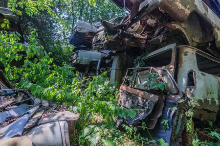 Overgrown cars on an old junkyard 免版税图像