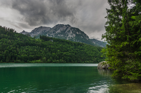 lake with trees and mountains in summer holiday