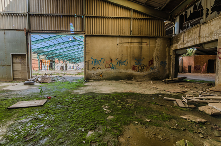 abandoned factory with moss on the ground