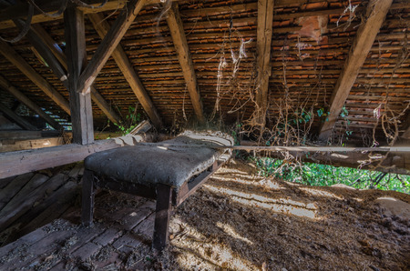 bed in overgrown attic of old house Imagens