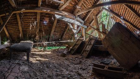 overgrown attic panorama view