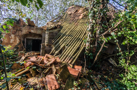 collapsed wooden roof from a house in the forest