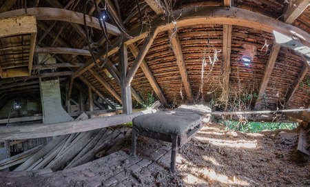 bed in overgrown attic panorama view