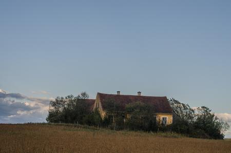 old overgrown farm in nature landscape Stok Fotoğraf