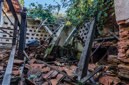 collapsed farmhouse in the forest Imagens