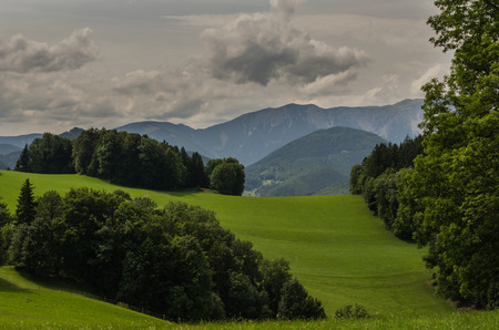 Meadow trees and mountains while hiking