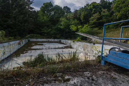 abandoned empty swimming pool in a forest 版權商用圖片