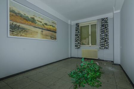 room with picture and plants on the floor in a hospital Standard-Bild - 131596077