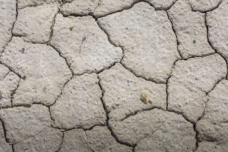 cracks in a dry soil with lime in a quarry