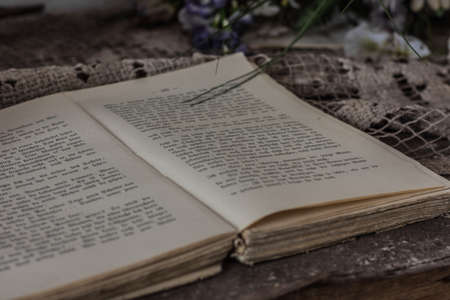 open book in a room from a abandoned house in the forest Archivio Fotografico