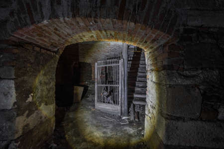 dark vault in a cellar from a castle on the country Archivio Fotografico