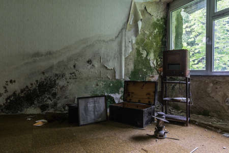 radio lamp and box in a moldy room in the forest