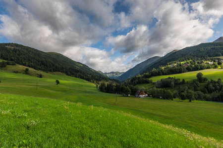 green nature landscape with mountains and meadows in the summer
