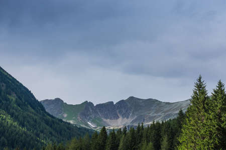 high mountains with forest and clouds on the sky in the summer