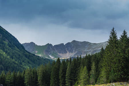high mountains with forest in the foreground in the nature Zdjęcie Seryjne