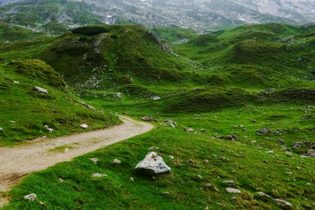 dirt road in a wonderful hilly green landscape in the mountains