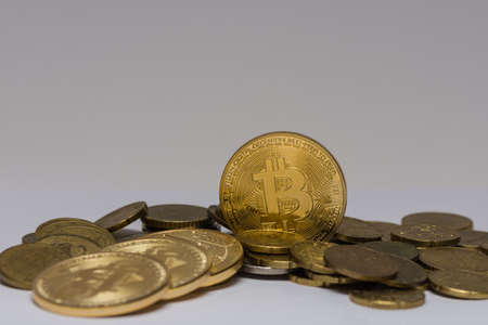 golden valuable bitcoin standing between other coins with gray background