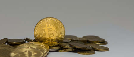 golden valuable bitcoin standing between other coins with gray panorama view