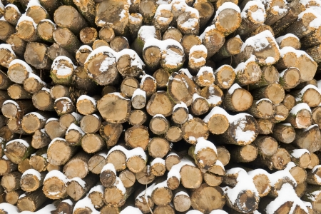 front view of wood stack in winter weather