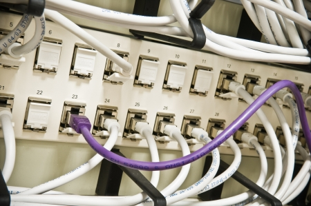 patch panel: ethernet cables on a patch panel