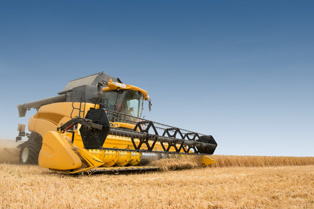 harvest: close view of modern combine harvester in action. Stock Photo
