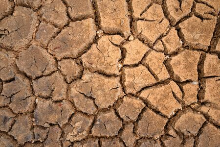 desiccation: brown texture of polygons of desiccation caused by drought