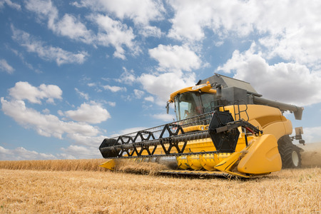 close view of modern combine harvester in action. Imagens