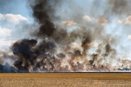 clouds of black smoke in an harvested field catching fire