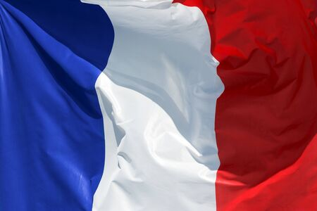exact: full framed french flag floating in the wind exact colors