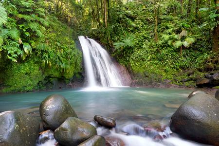 """Site touristique le plus connu de Guadeloupe, Antilles françaises, """"cascade aux ecrevisses""""."""
