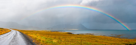 Panorama of road going through Icelandic landscape under a full rainbow against a overcast sky with birds in flight