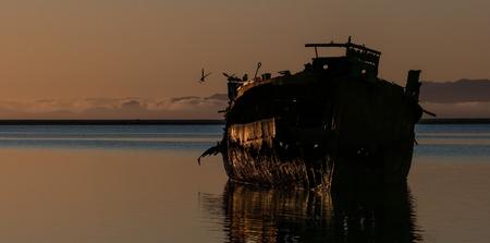 Abandoned ship and seagulls.