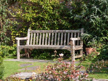 blumen: Empty bench, somewhere in Cornwall Stock Photo