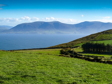 dingle peninsula: View from the Dingle Peninsula to the Iveragh peninsula with green grass, a blue ridge and a clear blue sky.