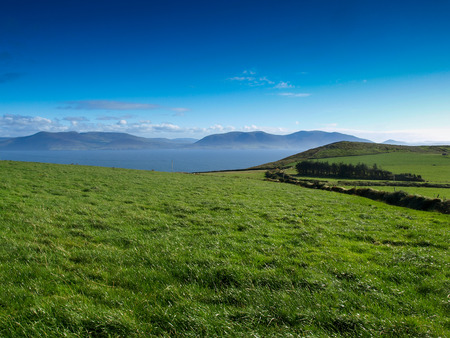 green ridge: View from the Dingle Peninsula to the Iveragh peninsula with green grass, a blue ridge and a clear blue sky.