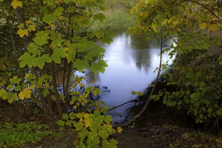 A picture of a lake in a forest clearing in the fall, displaying the water photo