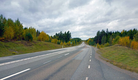 A picture of a highway going down in a slope, in an autumnal setting  photo