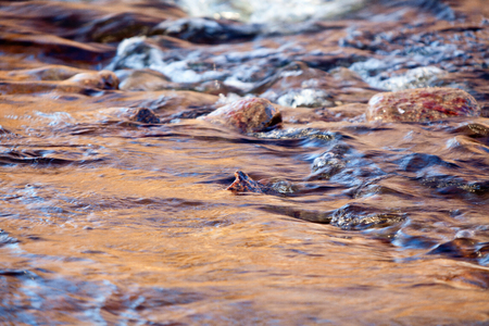 The surface of a stream in the summer, with a few rocks coming out of the water  Stock Photo