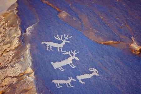 cave painting: Un primer plano de una pintura rupestre que representa a algunos animales