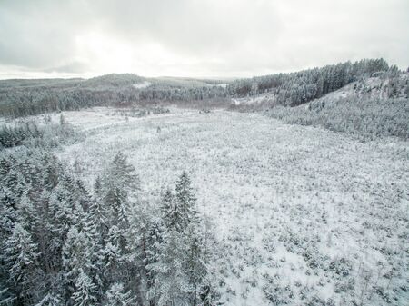 forested: Forested hill country with snow