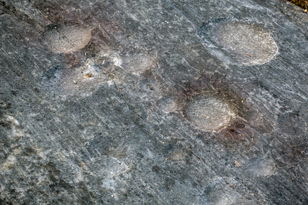 Cup and ring mark