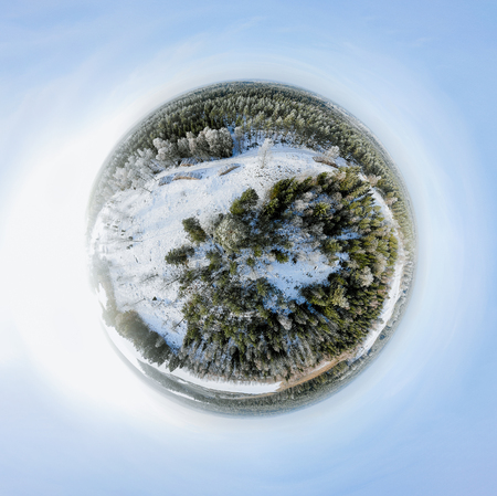 Sperical panorama of a winter forest