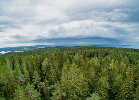 View of a Wooded landscape from Granna mountain in Sweden 写真素材