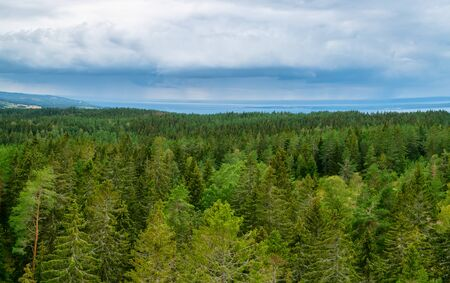 View of a Wooded landscape from Granna mountain in Sweden 写真素材 - 128731926