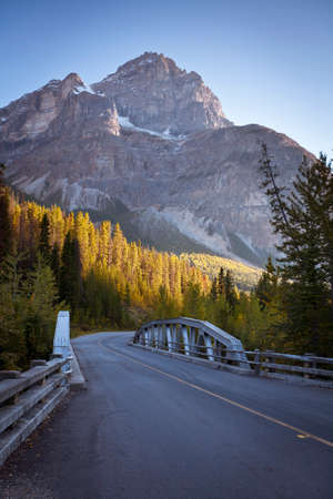 A street leading into a beautiful view of the Canadian Rocky Mountains