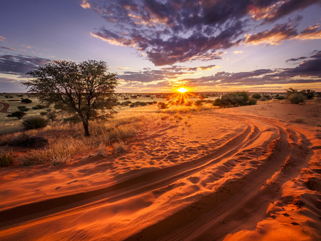 Beautiful sunset over the scenic Kalahari landscape in Namibia 스톡 콘텐츠