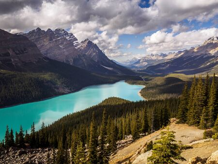 Panoramic view of Peyto Lake in Yoho National Park, Canada
