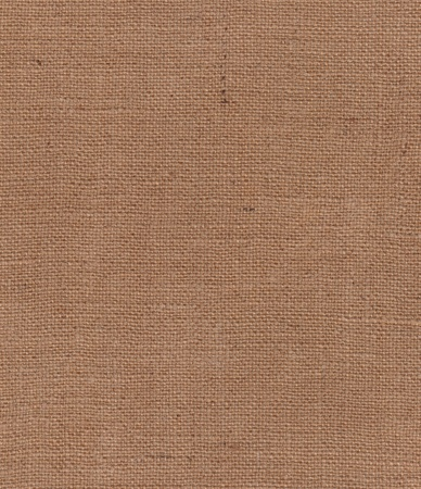 Old burlap texture Stock Photo - 10054815