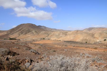 Wild landscape  Fuerteventura - Spain  photo